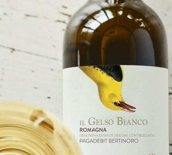 Vino-15_Q-Il-GelsoBianco-Romagna-Pagadebit